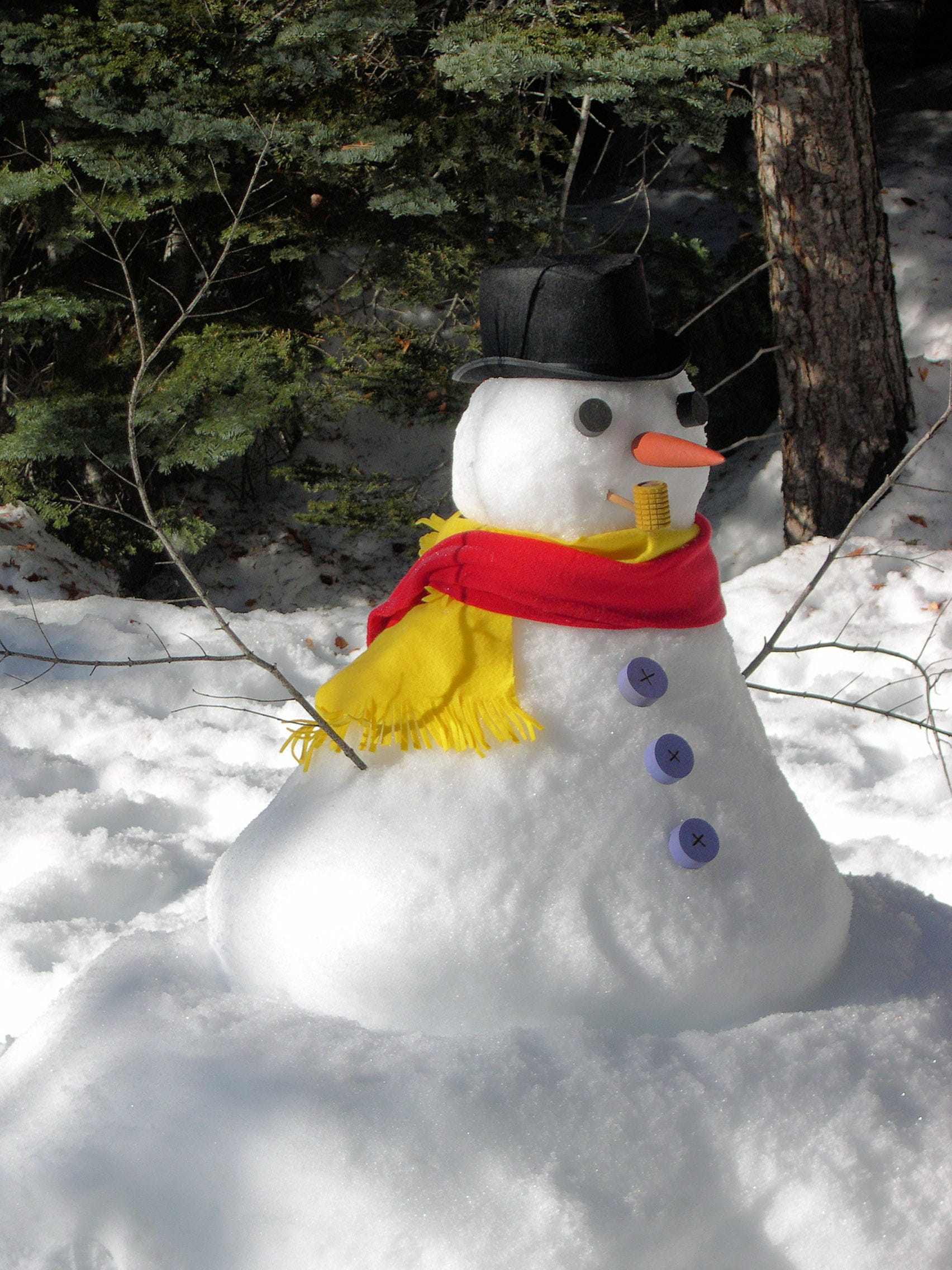 A snowman in a hat and red scarf