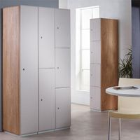 Grey locker doors with Oak end panels