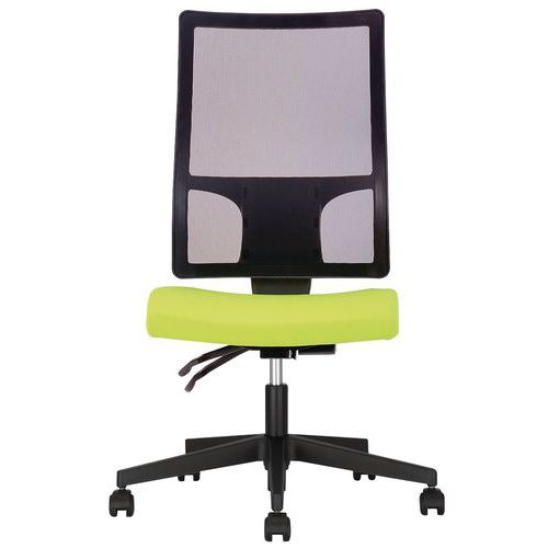 Aquila Mesh Back Office Chair