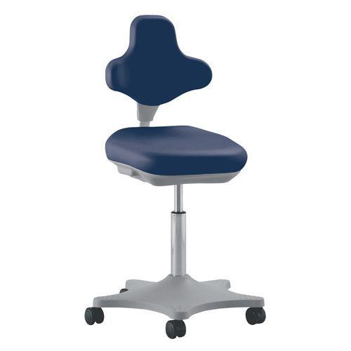 Ergonomic Laboratory Chair