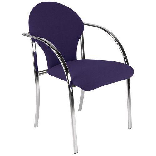 Carpathian Visitor Chair